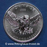 Great Horned Owl Virginia Uhu Eule Silber 1oz