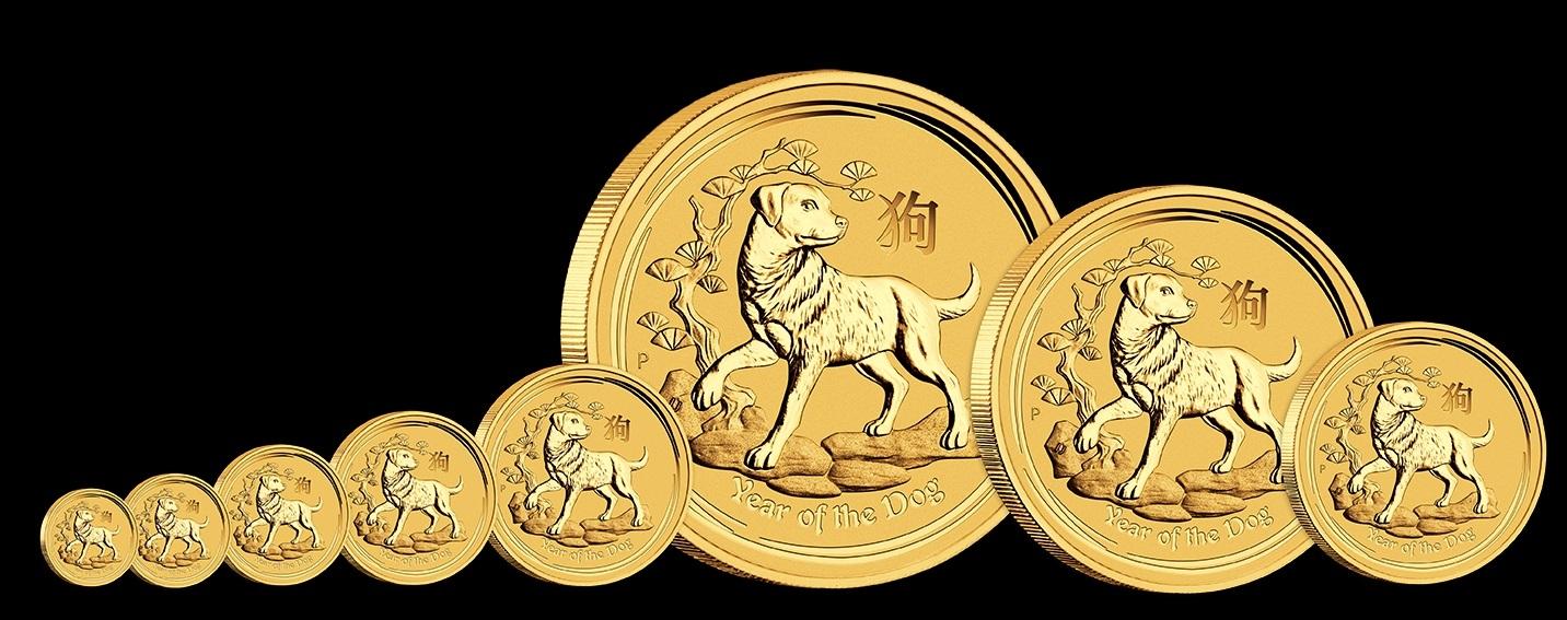 Lunar-II-hund-gold-alle-gr-ssen